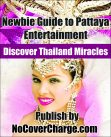 Newbie Guide to Pattaya Entertainment